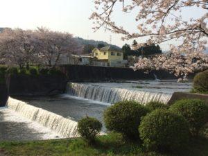 River & Cherry